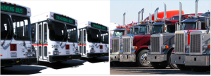 Bus and Trucks