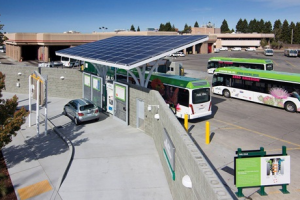 DOT Puts Up $25 Million for Zero Emission Buses