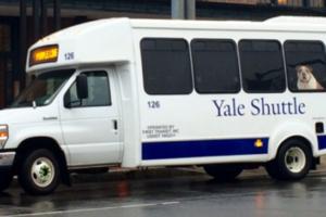 Yale University Chooses an Easy-to-Adopt Solution to Reduce Fuel Emissions