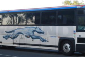 Greyhound Partners with Google Maps for Connected Customer Travel