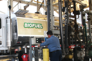 Biodiesel Highlights Five Steps to Better Cold Weather Fuel Performance